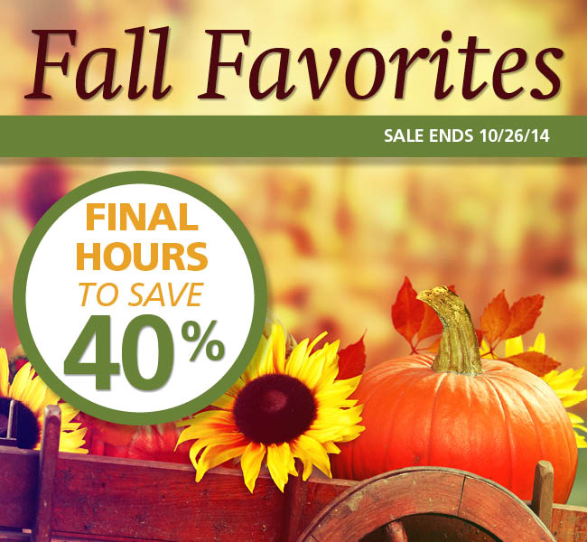 Fall Favorites Sale 2014: Final Hours to Save 40%!